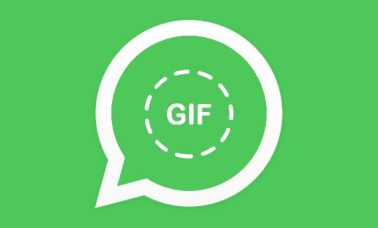 WhatsApp videos to GIF